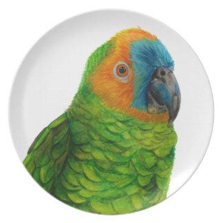 Brazilian Parrot Plate