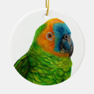 Brazilian Parrot Round Ceramic Decoration