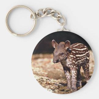 Brazilian Tapir young calf beside river Key Chain