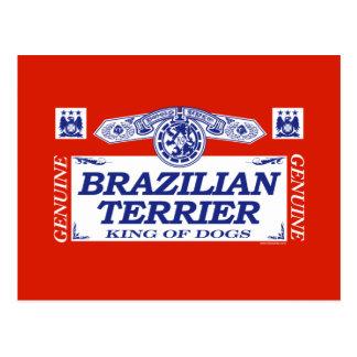 Brazilian Terrier Post Card