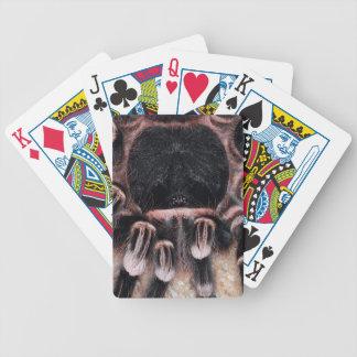 Brazilian White Knee Tarantula Bicycle Playing Cards