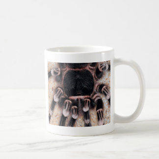 Brazilian White Knee Tarantula Coffee Mug