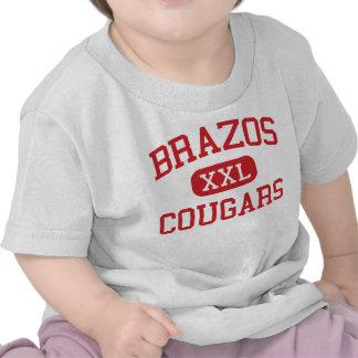 Brazos - Cougars - High School - Wallis Texas Tees