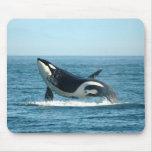 Breaching Whale Mousepad
