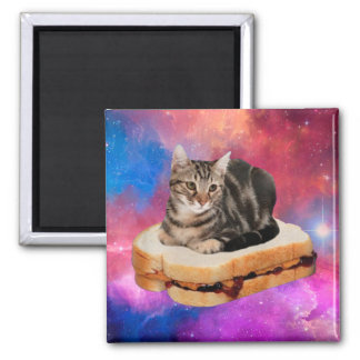 bread cat  - space cat - cats in space magnet
