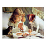 Breakfast in Bed: Girl, Terrier and Kitty Cat Postcard
