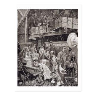 Breaking Bulk on Board a Tea Ship in the London Do Postcard