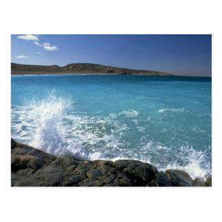 Breaking wave, Hudson Bay, Canada Postcard
