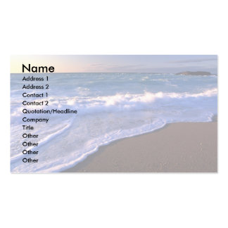 Breaking waves, Hudson Bay, Canada Double-Sided Standard Business Cards (Pack Of 100)