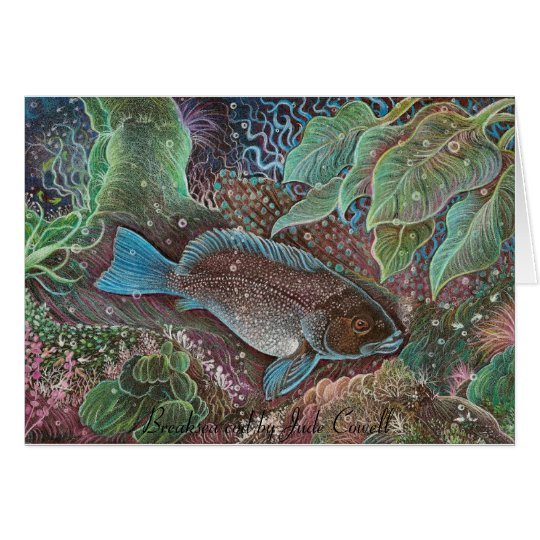 Breaksea cod Greeting Cards