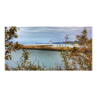 Breakwall Through the Trees Personalized Photo Card