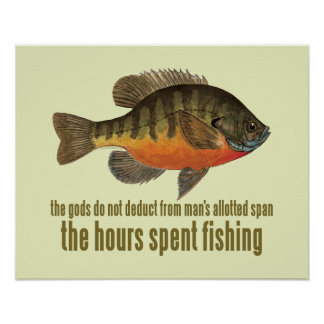 Bream Fishing Poster