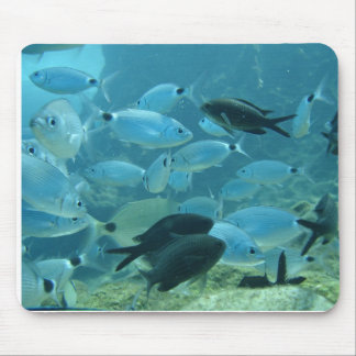 Bream School Mouse Pad