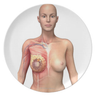 Breast cancer plate