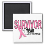 BREAST CANCER SURVIVOR 1 Year & Counting Magnets