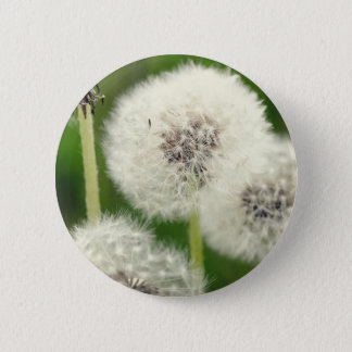 Breath flower 2013 1 6 cm round badge