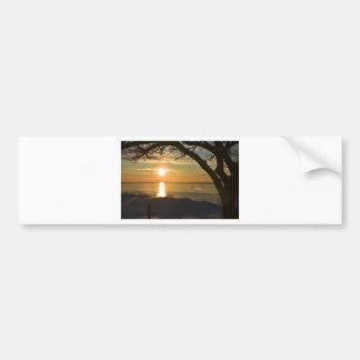 Breathtaking Sunset Bumper Sticker