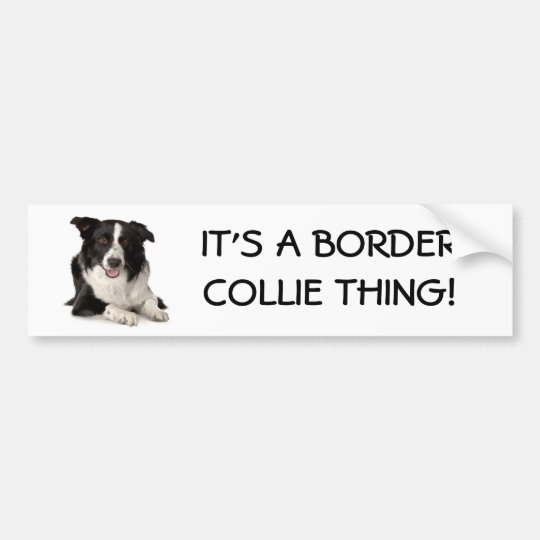 Breed-Border-Collie, IT'S A BORDER COLLIE THING! Bumper