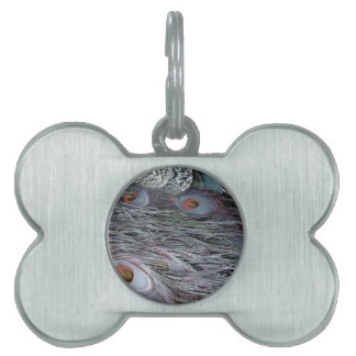 breezy peacock feathers pet ID tag