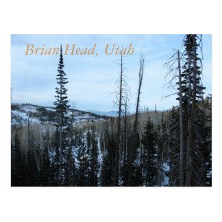 Brian Head, Utah Postcard