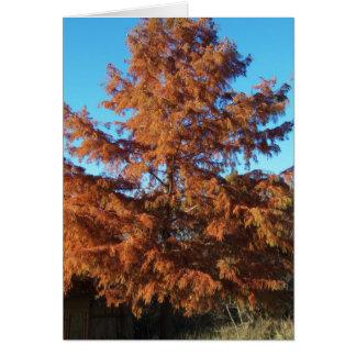 Brian's Tree, AutumnPoem Greeting Card