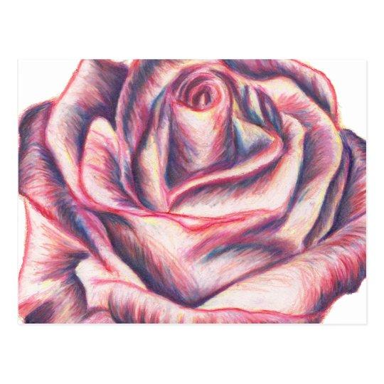Briar Rose Postcard