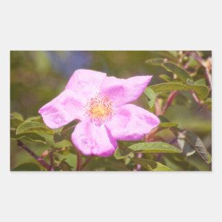 Briar Rose Rectangular Sticker