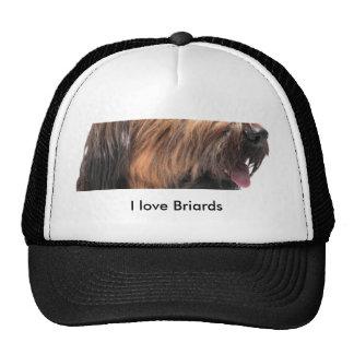 Briard Cap
