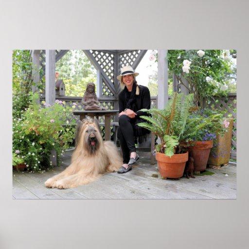 Briard Dog under Gazebo Poster
