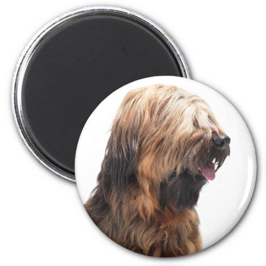 Briard fauve 3 6 cm round magnet