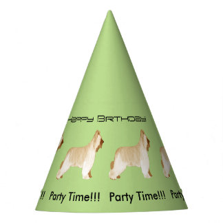 Briard - Happy Birthday Party Hat