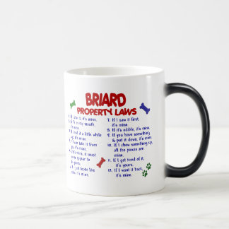 BRIARD Property Laws 2 Magic Mug