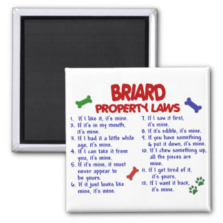 BRIARD Property Laws 2 Magnet