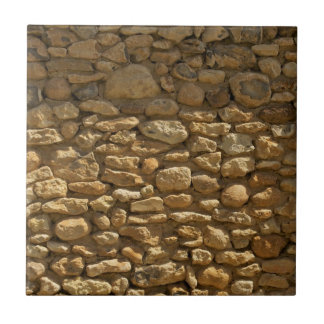 Brick Wall Background Small Square Tile