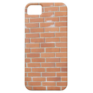 brick wall (red) iPhone 5 cover