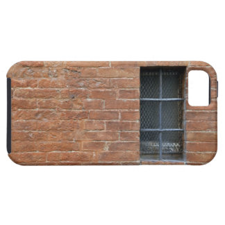 Brick wall with a typical pattern. The wall was iPhone 5 Covers
