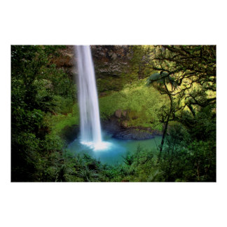 Bridal Veil Falls, NZ Print