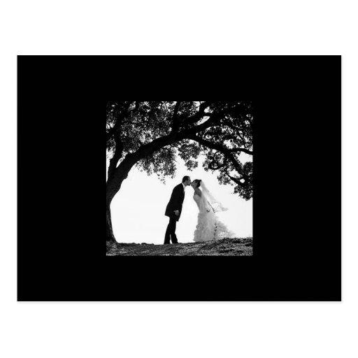 Bride Kiss under Oak Postcard