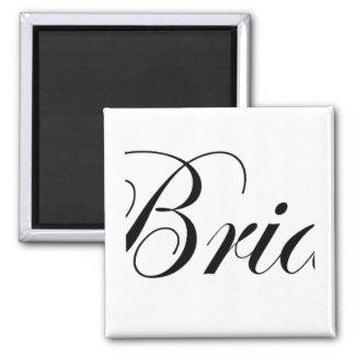 Bride T-shirt Magnets