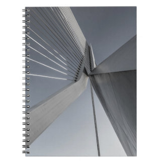 Bridge Architecture Notebooks
