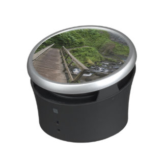 Bridge at Latourell Falls, Columbia River Gorge, Bluetooth Speaker