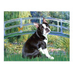Bridge - Boston Terrier #4 Postcards