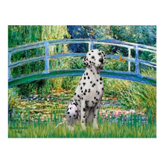 Bridge - Dalmatian Postcard