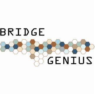 Bridge Genius Photo Cutout