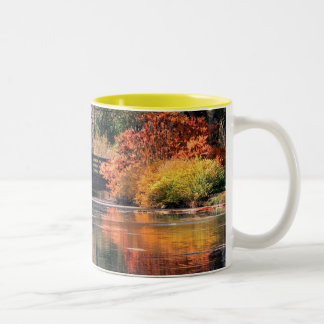 Bridge in the Fall Mug