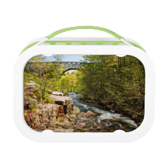 Bridge Over River Lunch Box