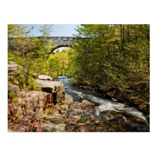 Bridge Over River Postcard