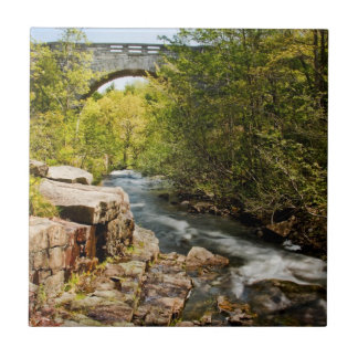 Bridge Over River Tile