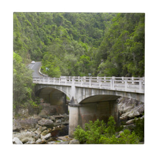 Bridge Over Stream, Tsitsikamma National Park Small Square Tile