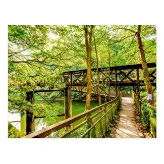 Bridge over the River Wye Postcard